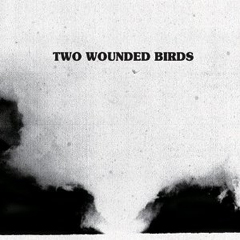 Two Wounded Birds