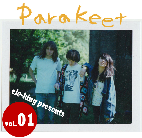 ele-king presents <br/>PARAKEET Japan Tour 2013